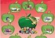 گزارش تخصصی مربی بهداشت مدرسه